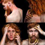 Golden Redhead 2 y 3