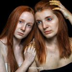 Golden Redhead 16